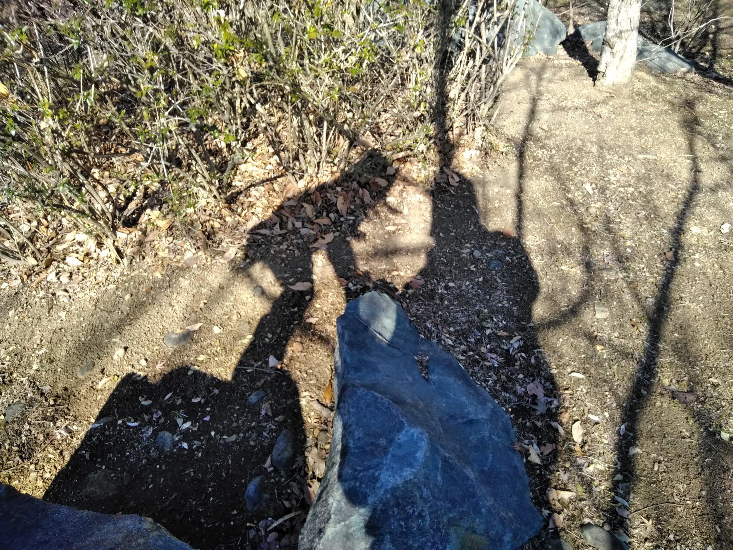 2人の影の写真