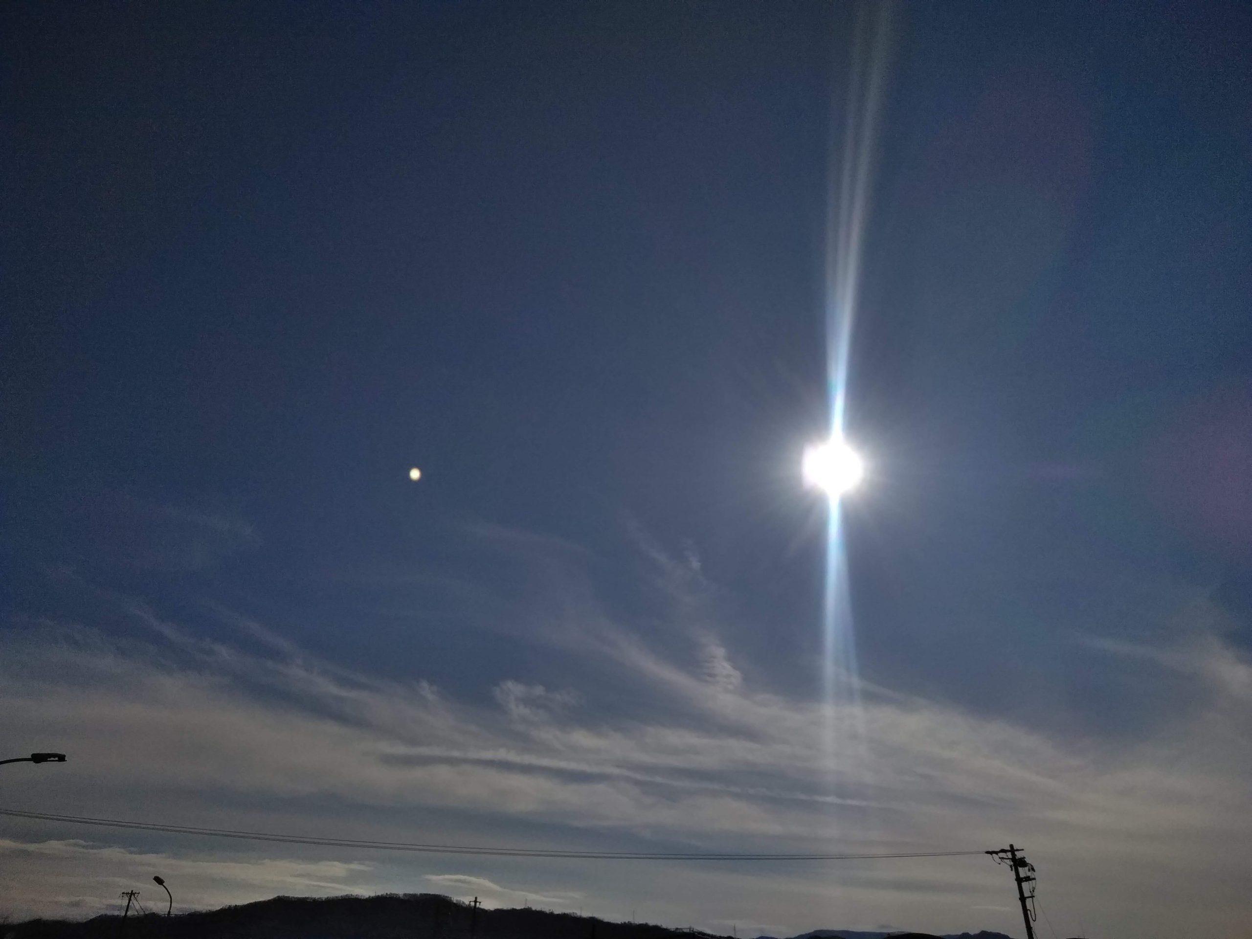 龍雲の写真(背中)