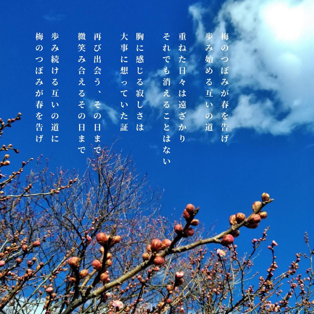 写真詩「梅のつぼみが春を告げ」